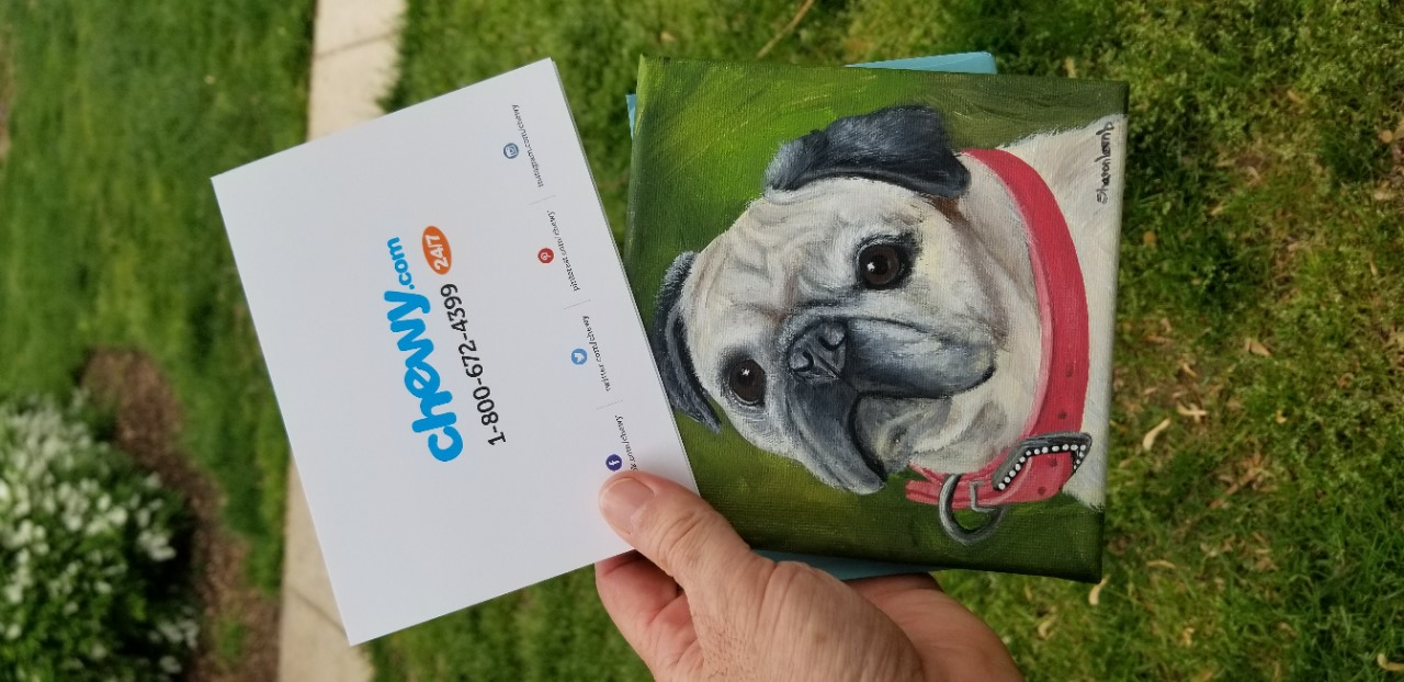 Chewy Sends Grieving Pet Owners Sympathy Gifts