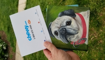Chewy Sends Grieving Dog Owners Portraits and Flowers