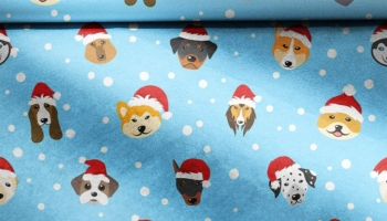 Edible Wrapping Paper For Dogs