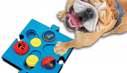 Flip N' Slide Puzzle For Dogs Review