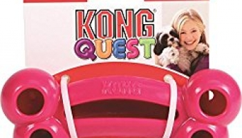 Kong Quest Bone Treat Dog Toy Review – An Amazing Treat Toy